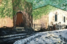 Alamos mit Tor